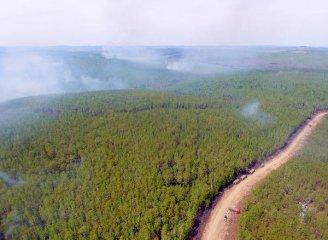 成都铁路港13个月完成俄罗斯木材回程班列363列