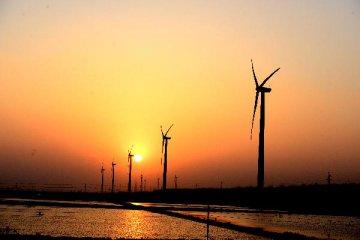 """通訊:我們有資源,等你們的技術--巴西""""太陽城""""期待中國投資"""
