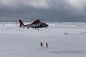 研究:北冰洋海冰可能在25年後的夏天完全消融