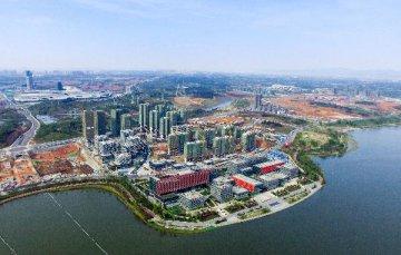 臨港新片區2020產業發展頭炮打響:12個產業項目今天簽約