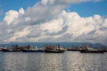广东省省长马兴瑞:推动海上风电规模化发展