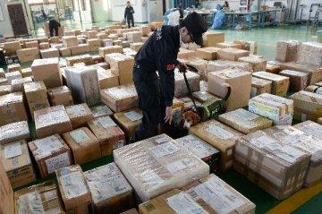 跨境電商新規為中國中小企業出口拓寬通道