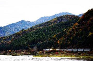 哈尔滨至伊春高速铁路项目启动